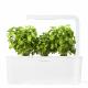Smart Herb Garden c/tampa Branca