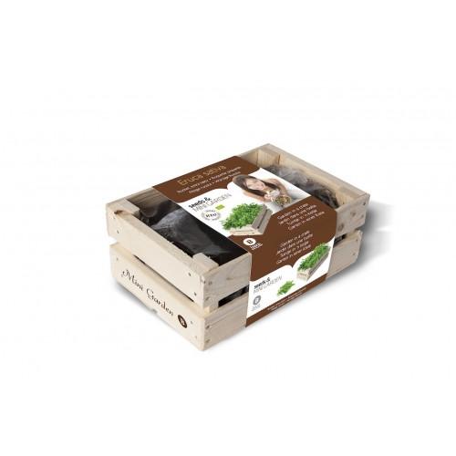 Caixa madeira 'Rúcula Bio'