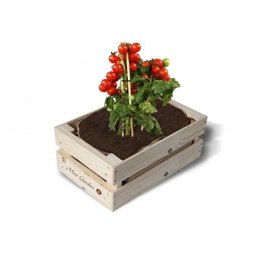Caixa madeira 'Tomate Bio'