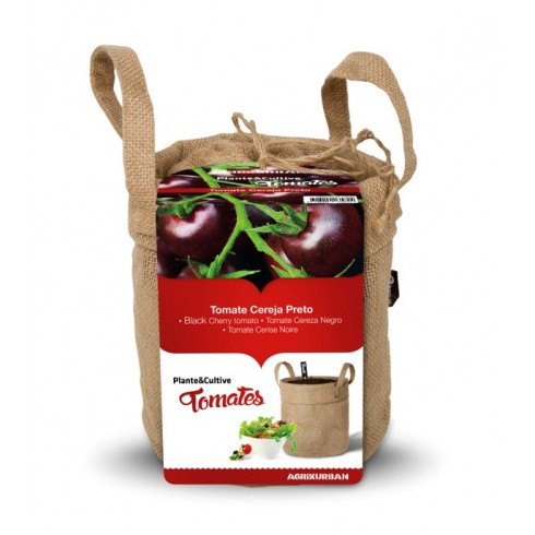 Tomates - Cereja Preta Doce