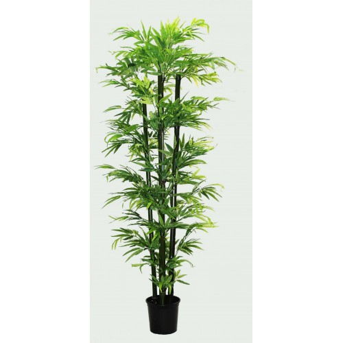 Árvore de Bamboo 1,50m