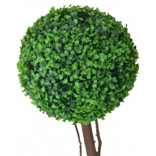 Planta Bola de Buxo 22cm diâm.
