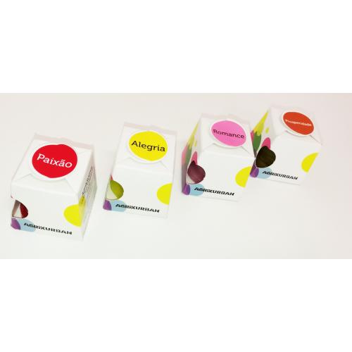 Caixa Cartão p/10 unidades Creascents