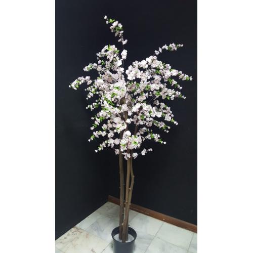 Árvore Flor de Macieira